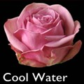 cool-water