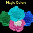 Magic-Color